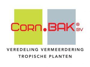 con. bak bromelia's logo